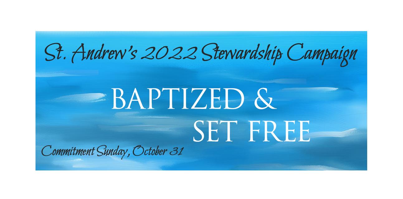 Stewardship web